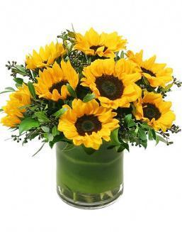Sunshine | Flowers for Holiday flowers
