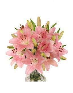 Bouquet of 25 pink lilies | Flowers for Housewarming