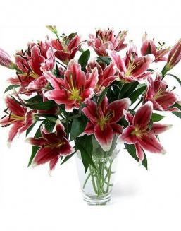 Bouquet of 51 pink lilies | Flowers to mother flowers