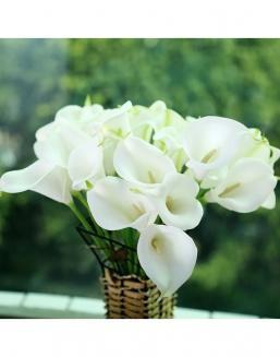 Bouquet of 51 white callas | Flowers to mother flowers
