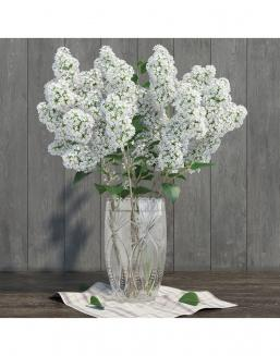 Bouquet of 15t white lilac | Flowers for Holiday flowers