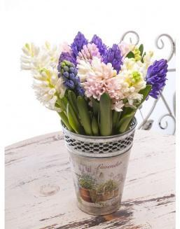 Bouquet of 15 hyacinths | Flowers for Holiday flowers