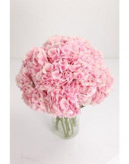 Bouquet of 25 pink hydrangeas | Hydrangeas