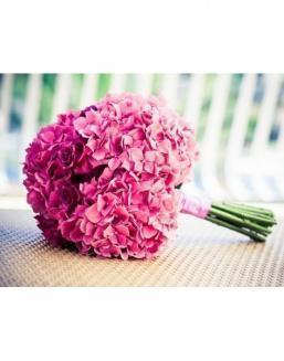 Bouquet of 15 pink hydrangeas | Hydrangeas
