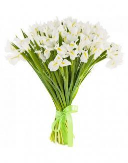 Bouquet of 25 white irises | Flowers flowers