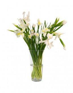 Bouquet of 15 white irises | Flowers on International Women's Day flowers