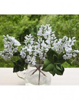 Bouquet of 25 white lilac | Flowers to mother flowers