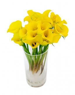 Bouquet of 51 yellow irises | Flowers flowers