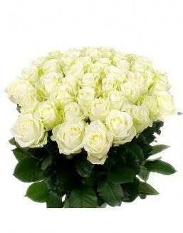 Bouquet of 51 white roses | Flowers flowers