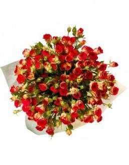 Bouquet of 101 red rose bushes | Flowers to beloved