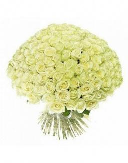 Bouquet of 51 white holland roses | White roses flowers