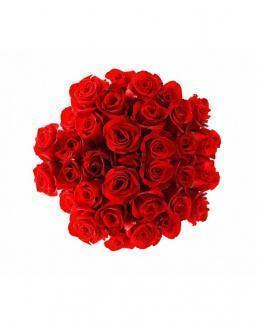Bouquet of 25 red roses | Roses flowers