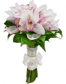 Bouquet of white orchids | Orchids flowers