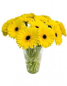 Bouquet of 101 yellow gerberas | Yellow flowers flowers