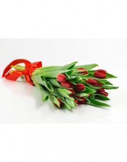 Bouquet of 15 red tulips | Flowers for Birthday flowers