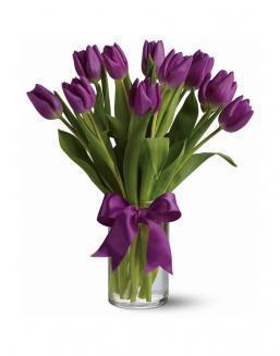 Bouquet of 15 purple tulips | Purple flowers
