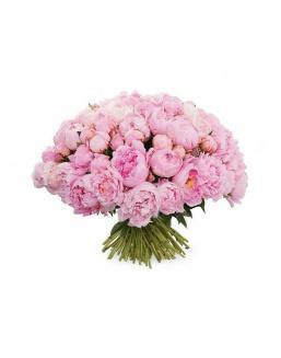 Bouquet of 101 peonies | Flowers to beloved