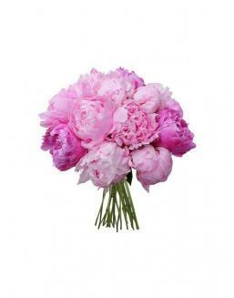 Bouquet of 15 pink peonies | Flowers for Birthday flowers