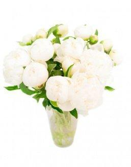 Bouquet of 15 white peonies | Flowers to friend for Birthday