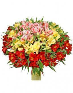 Bouquet of 15 alstroemerias | Flowers to friend for Birthday