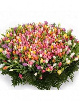 Mix bouquet 501 tulips | Purple flowers