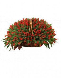 Basket 501 red tulips | 501 flowers expensive