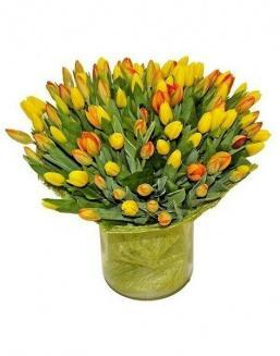 Bouquet 501 yellow tulips | 501 flowers expensive