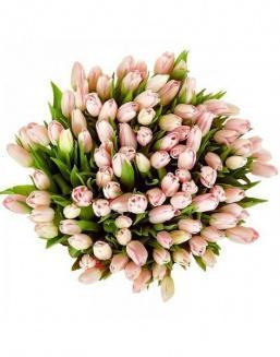 Bouquet 201 pink tulips | Flowers to mother flowers