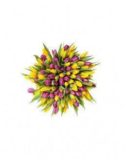 Mix bouquet 201 yellow and violet tulips | Flowers for Birthday flowers