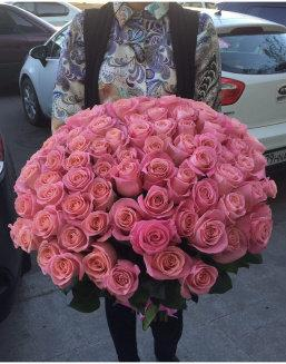 My only one | Pink roses flowers