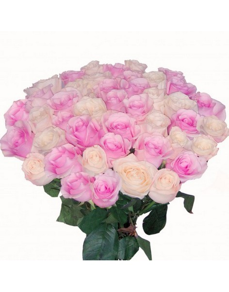 Bouquet of roses: pink and cream